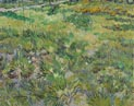 Vincent van Gogh: 'Long Grass with Butterflies'