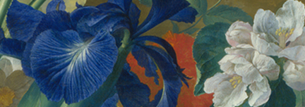Detail from Jan van Huysum, Flowers in a Terracotta Vase, 1682 - 1749