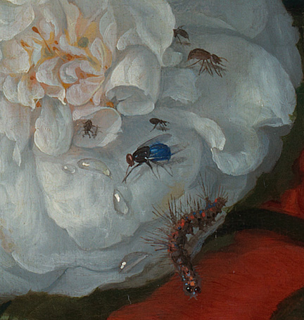 Detail from Jacob van Walscapelle, 'Flowers in a Glass Vase' about 1670
