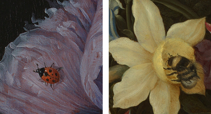 Detail from Jacob van Walscapelle, 'Flowers in a Glass Vase' about 1670 (left) and Detail from Ambrosius the Elder Bosschaert, 'Flowers in a Glass Vase', 1609–10 (right)