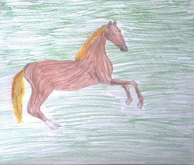 'Whistlejacket' by Dominyka aged 8 from Vilnius, Lithuania