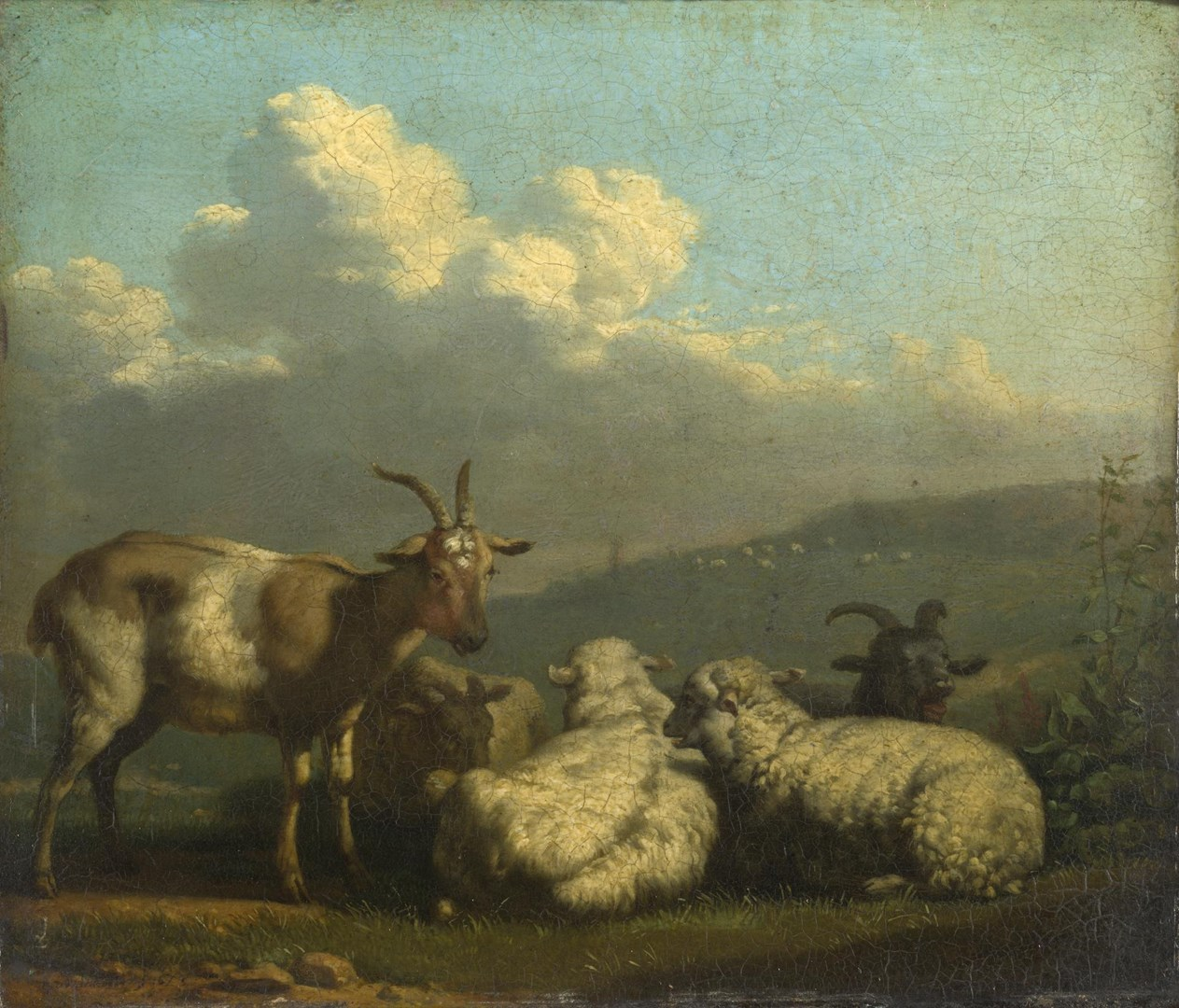 Sheep and Goats by Karel Dujardin