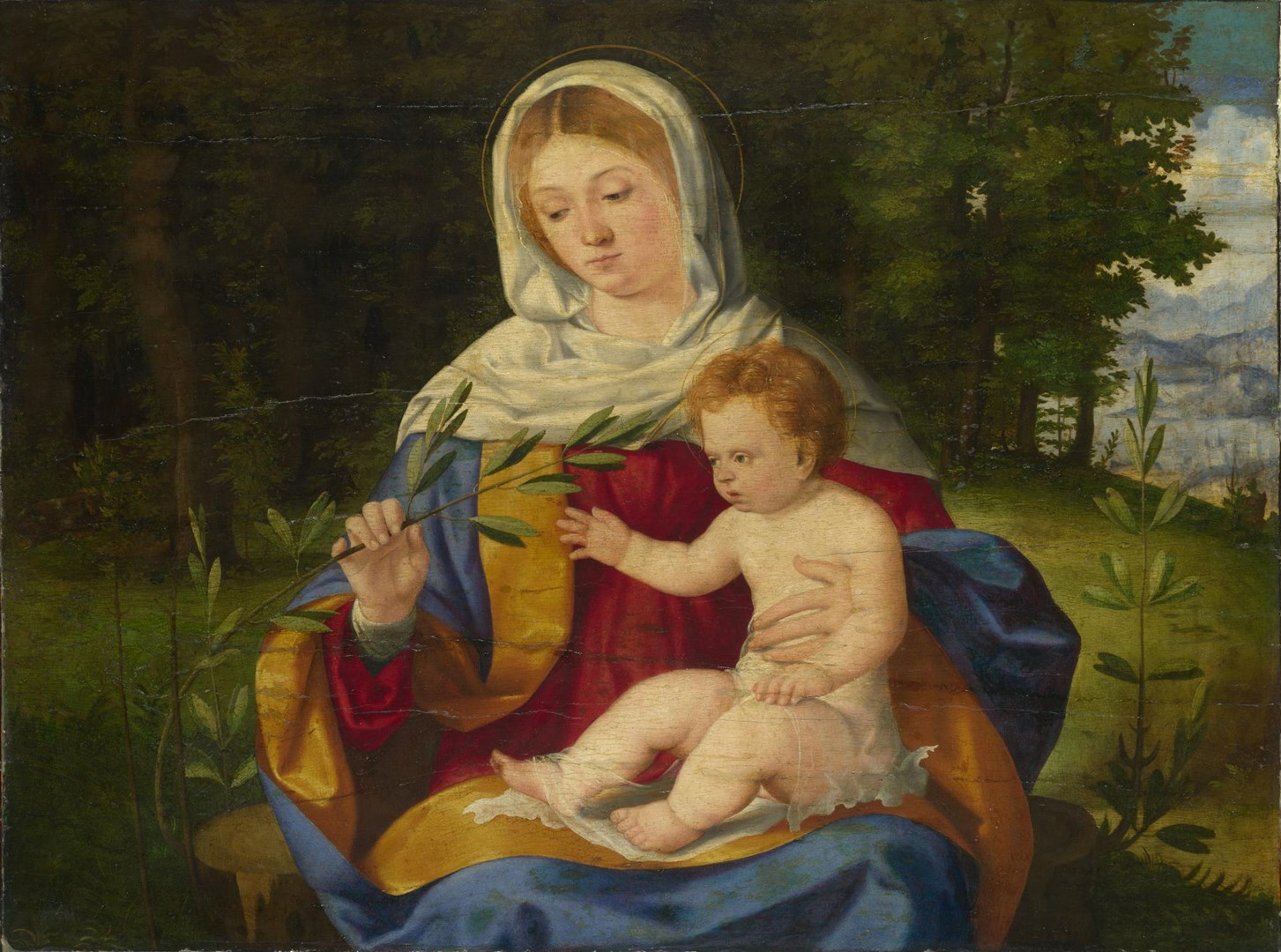 The Virgin and Child with a Shoot of Olive by Andrea Previtali