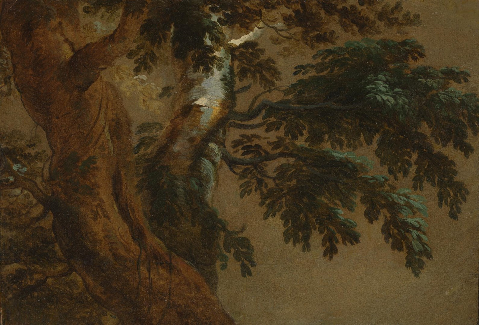 Study of Two Trees by Possibly by François Desportes