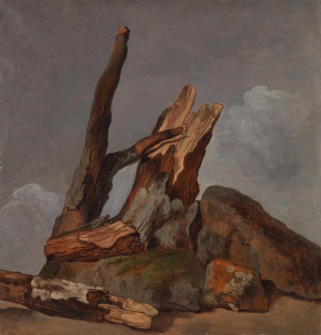 Rocks, Tree Trunks and Branches by George Augustus Wallis