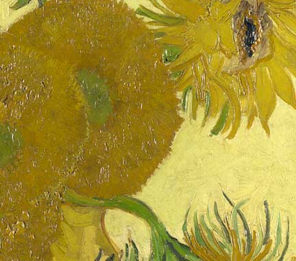 Detail from Van Gogh, 'Sunflowers', 1888