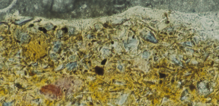 A cross-section from the bottom edge of the painting