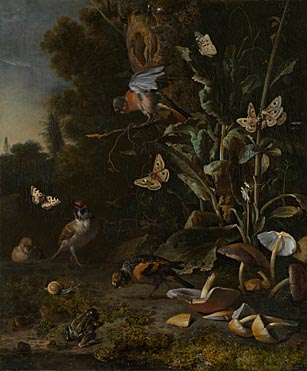 Melchior d'Hondecoeter: 'Birds, Butterflies and a Frog among Plants and Fungi'