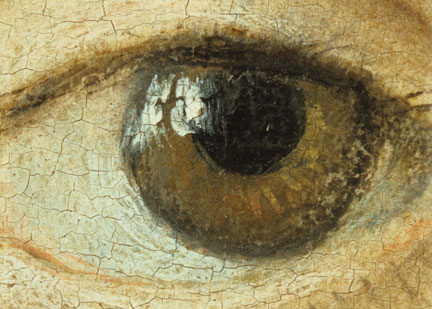 fig. 10 Detail from NG6539, the left eye of Johann Friedrich the Magnanimous