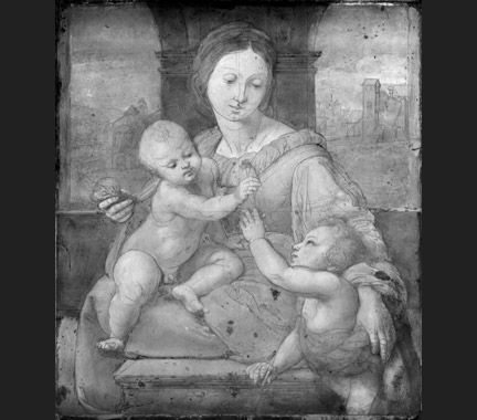 Raphael: Underdrawing of 'The Garvagh Madonna'.