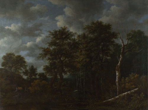 Jacob van Ruisdael: 'A Pool surrounded by Trees'