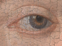 Jan van Eyck, 'Margaret, the Artist's Wife', 1439, photomicrograph of her left eye