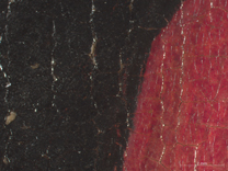 Jan van Eyck: 'Margaret, the Artist's Wife', 1439, photomicrograph taken before restoration